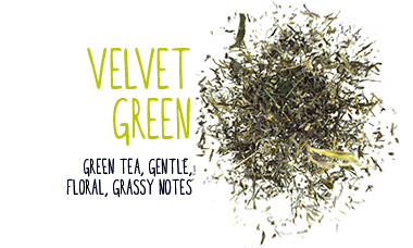 velvet green tea gentle floral grassy notes